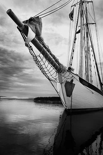 Michael Berman Black and White Marine Photography